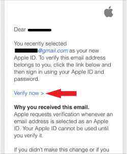 click-on-verify-now-in-app-store-screenshot